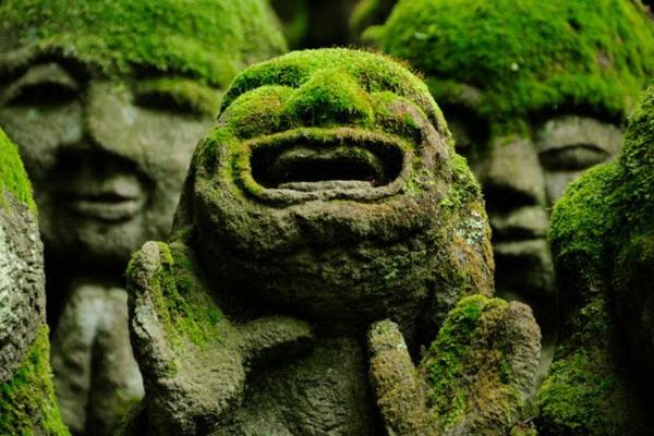 Отель + синкансэн: Токио и Киото
